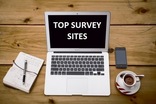 top survey sites